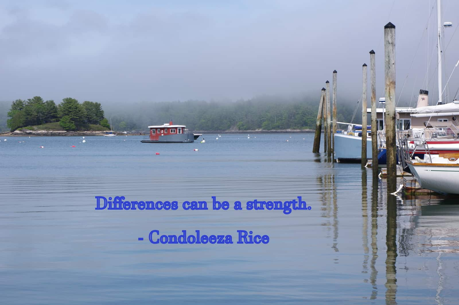 differences-are-strength