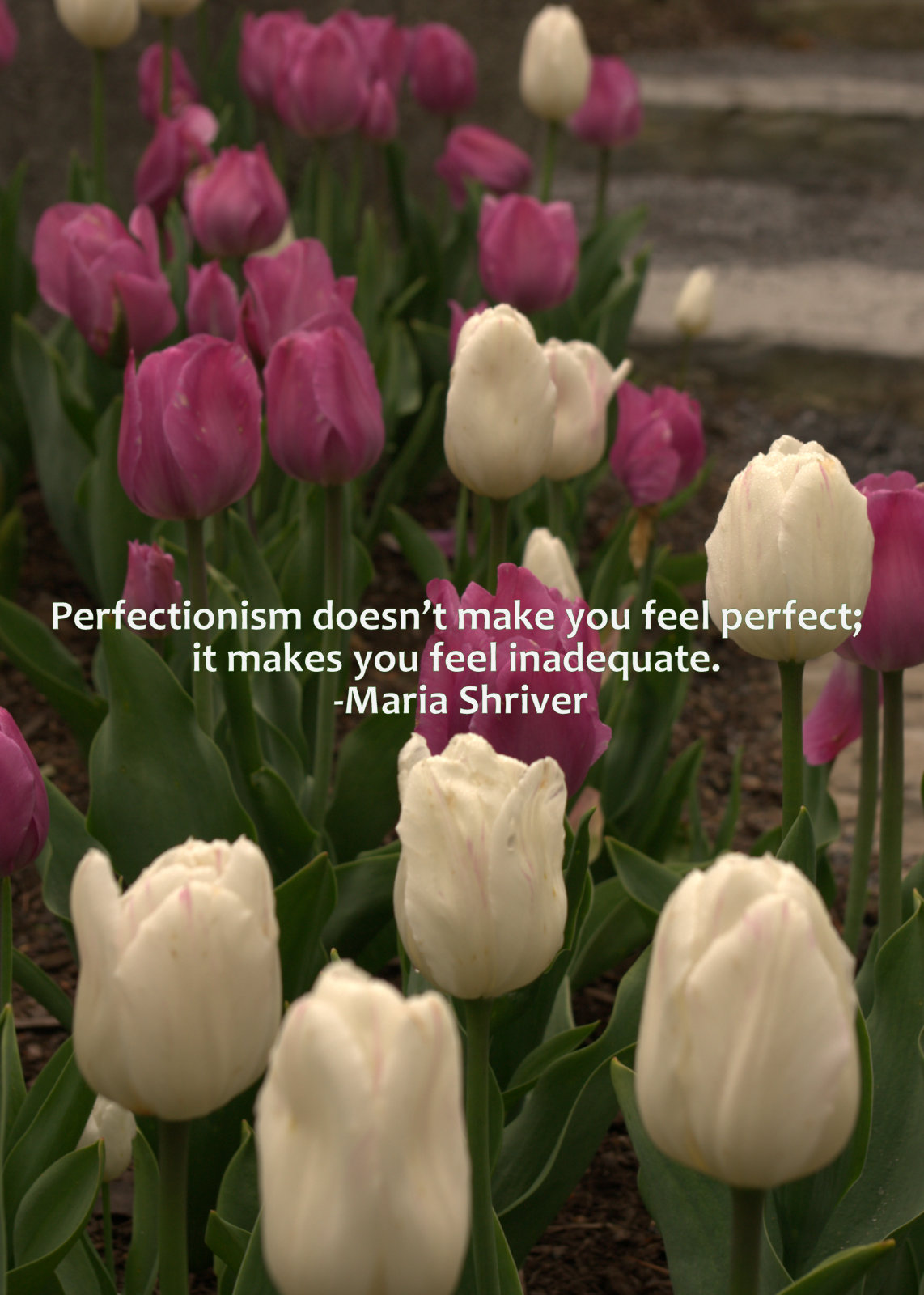 Confessions-from-a-recovering-perfectionist