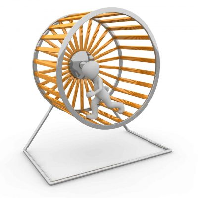 Job Turn Impeller District Hamster Wheel
