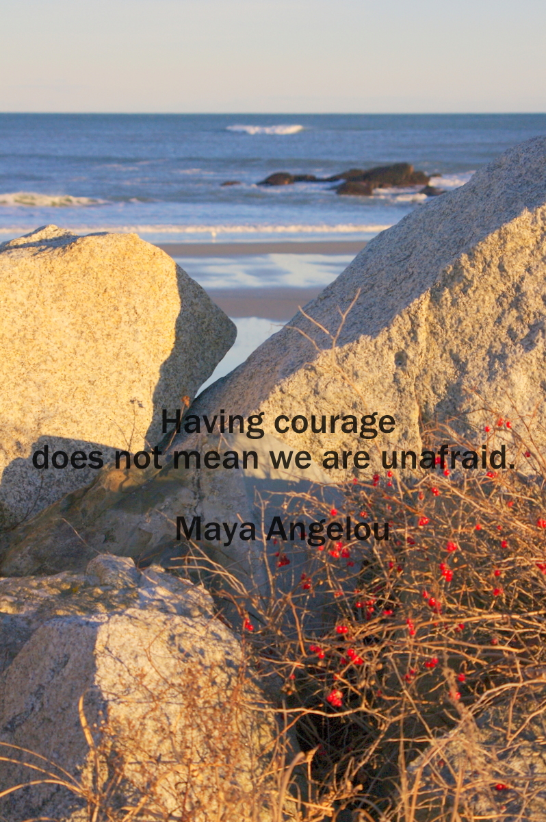 courageous not fearless
