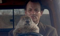 My Groundhog Day