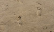 footprints-on-our.jpg