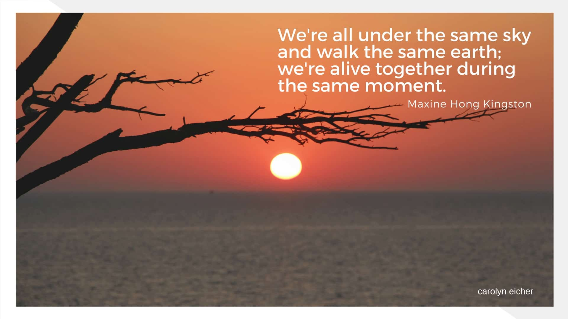 we are all under the same sky
