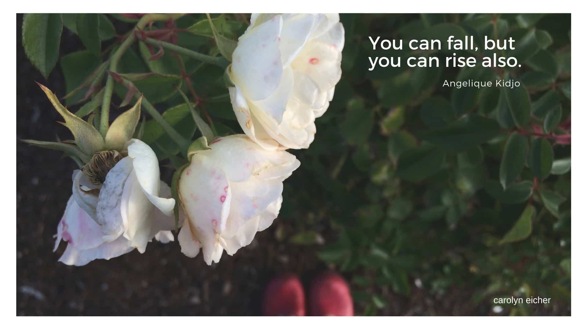 you can fall but you can also rise